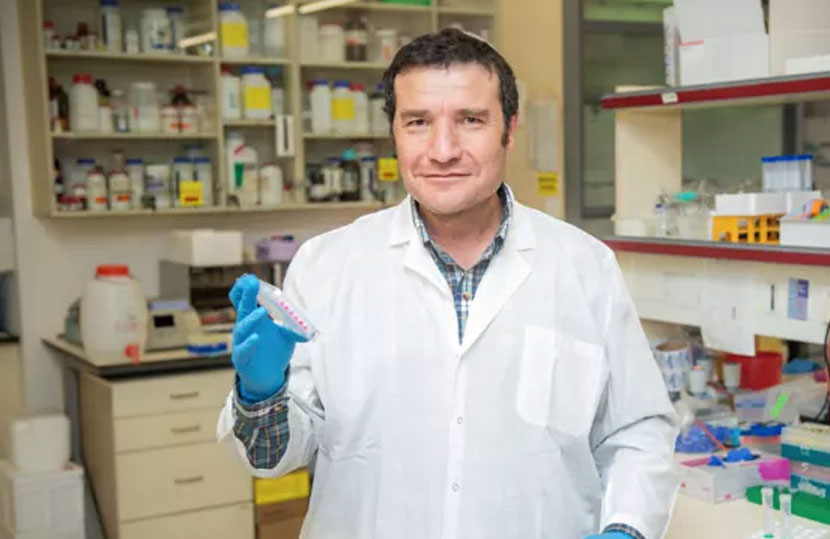 Israeli scientists have discovered that the SIRT6 protein may extend human life
